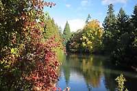 Portland Laurelhurst Park, Fall Colors
