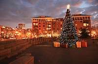 Portland Pearl District Jamison Square Christmas Tree