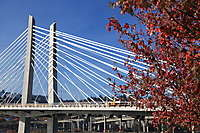 Tilikum Crossing, Portland's New Transit Bridge